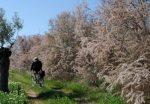 Ποδηλατάδα στην εξοχή