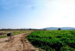 'Ποδηλατάδα' στην εξοχή Μεγάρων - φοτο: Μαρία Κορόγιαννη